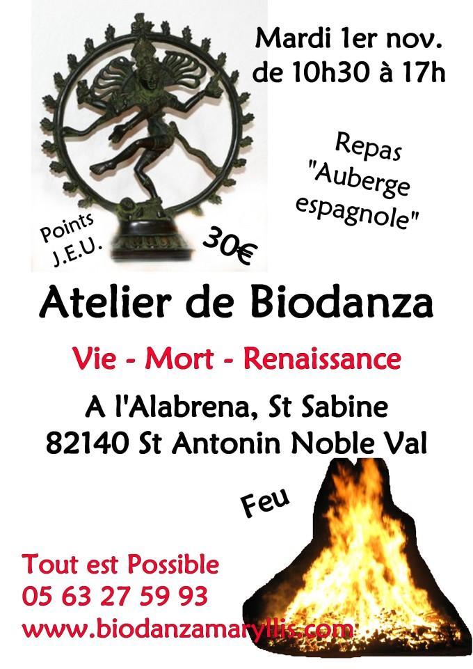 atelier-biodanza-vie-mort-renaissance