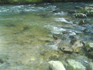 Rivière Vergers de sésame