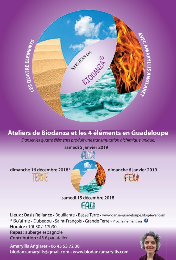 Affiche_Quatre_éléments_Guadeloupe.indd
