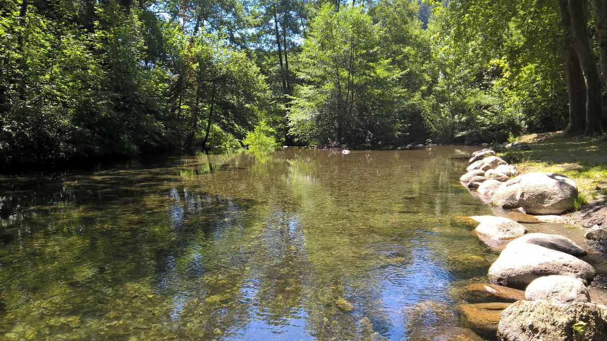 Rivière ensoleillée